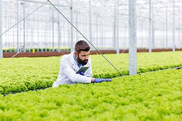 Técnico Superior en Gerencia Agrícola